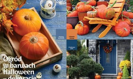 Jakie będą tegoroczne jesienne trendy w ogrodzie?